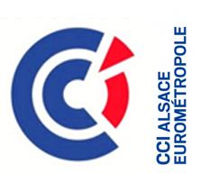 Vignette CCi Eurométropole
